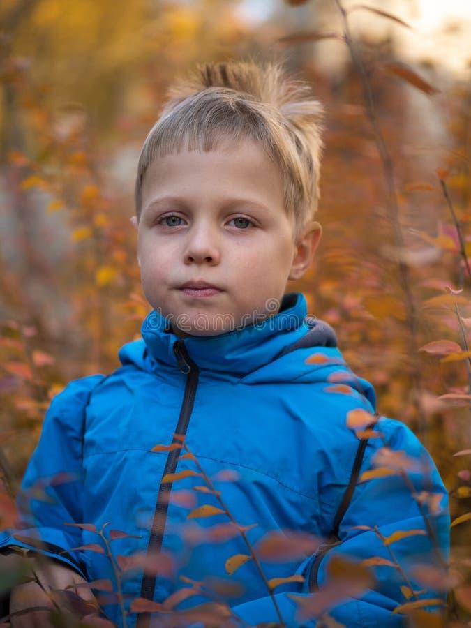Muchacho reservado en parque del otoño fotografía de archivo