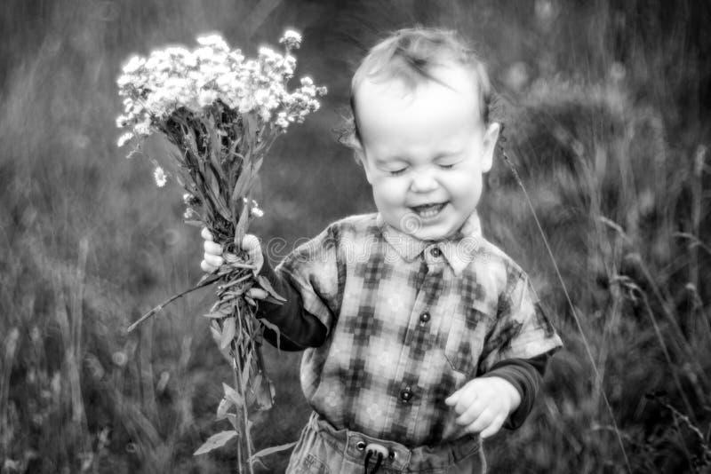 Muchacho sonriente que sostiene las flores de la manzanilla salvaje foto de archivo libre de regalías