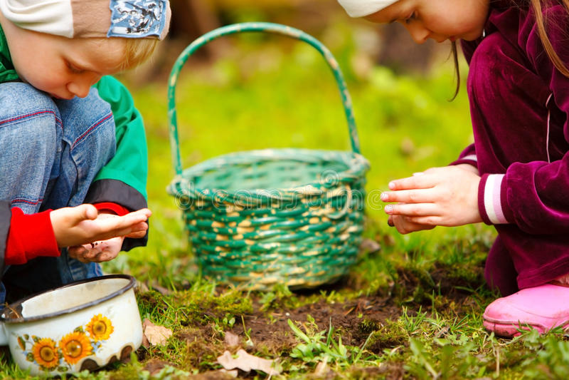 Muchacho y muchacha que revisan insectos en el jardín imagen de archivo