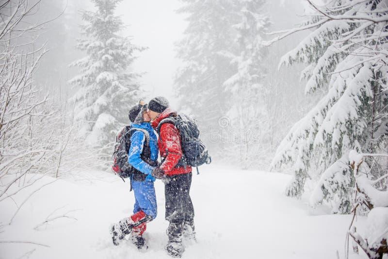 Muchacho y muchacha que se besan en bosque nevoso imagen de archivo
