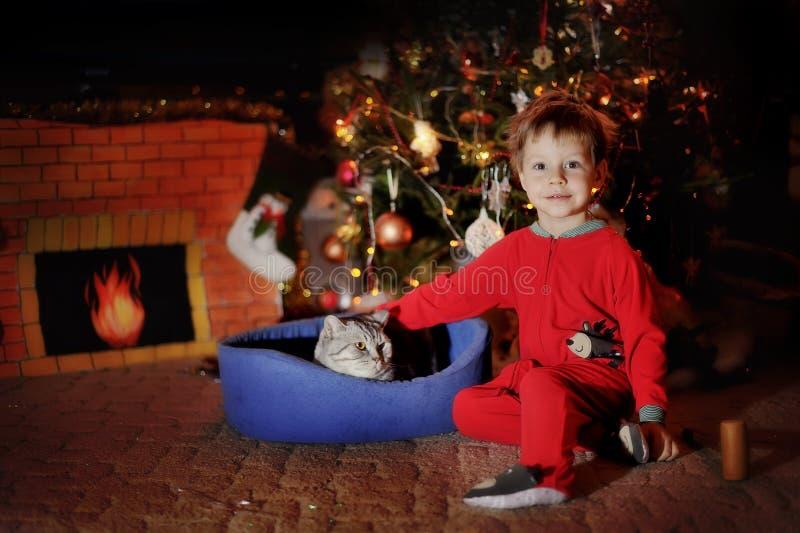 Muchacho y un árbol de navidad fotografía de archivo