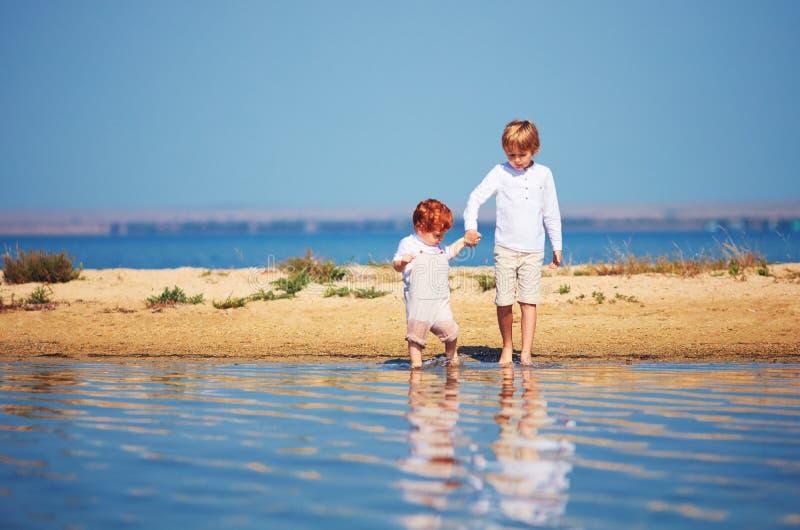 Muchachos, hermanos que caminan en agua poco profunda por la mañana del verano imagenes de archivo