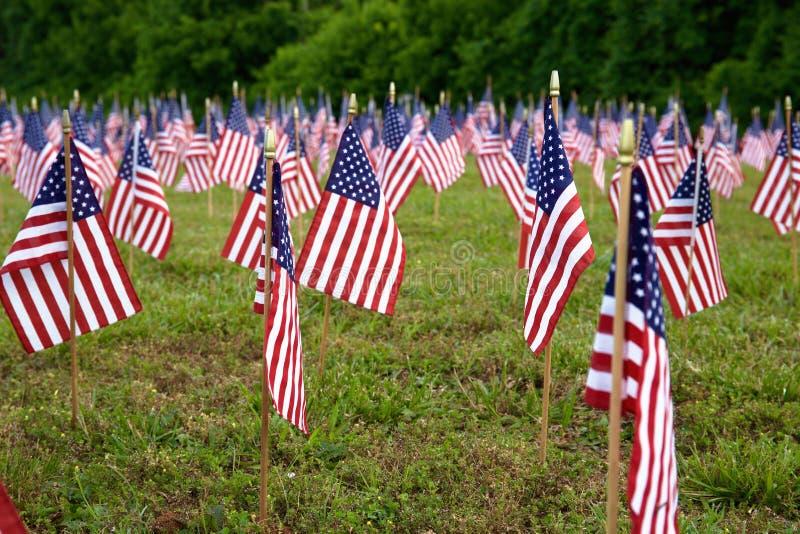 Muchas banderas americanas fotografía de archivo