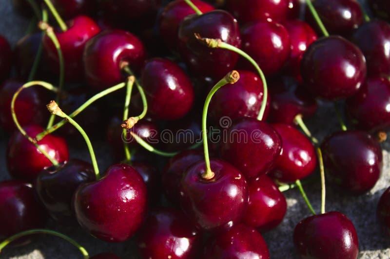 Muchas cerezas deliciosas después de la cosecha fotografía de archivo