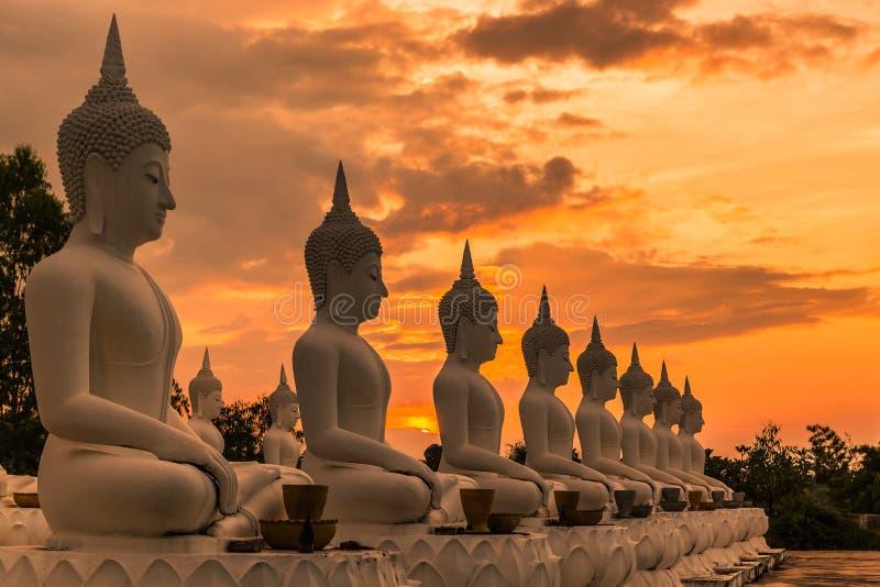 Muchas estatuas de Buda que se sientan en fila en puesta del sol fotos de archivo