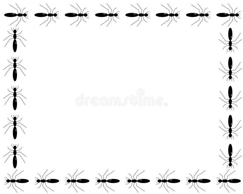 Muchas hormigas que enmarcan un espacio blanco de la copia libre illustration