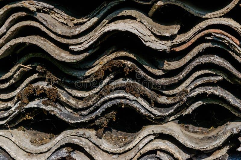 Muchas pizarras onduladas viejas para el tejado colocado en uno a y cubierto con el musgo y los liquenes imágenes de archivo libres de regalías