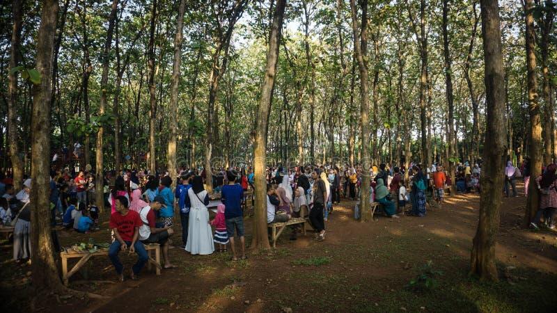 Muchedumbre de gente anónima que camina a través de árboles del jati del bosque fotografía de archivo libre de regalías