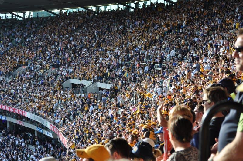 Muchedumbre en el magnetocardiograma Melbourne Victoria Australia del estadio que se divierte fotos de archivo libres de regalías