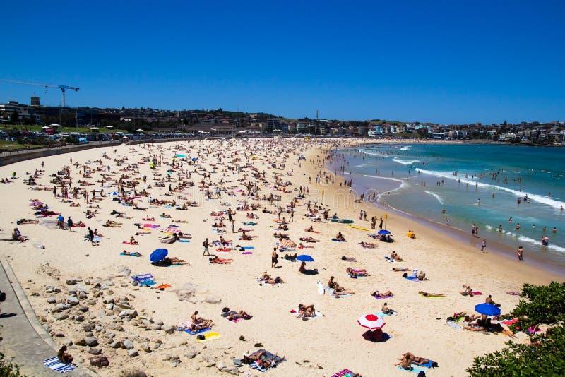 Muchedumbres de la playa de Bondi fotografía de archivo libre de regalías