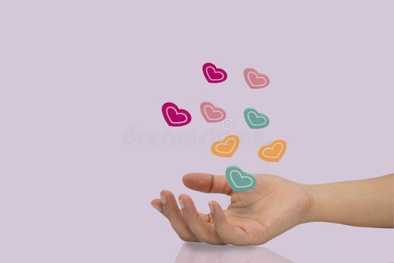 Mucho bola de madera del corazón del color en la mano de la mujer aislada en fondo púrpura fotografía de archivo