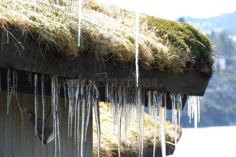 Mucho hielo debajo del tejado imagen de archivo