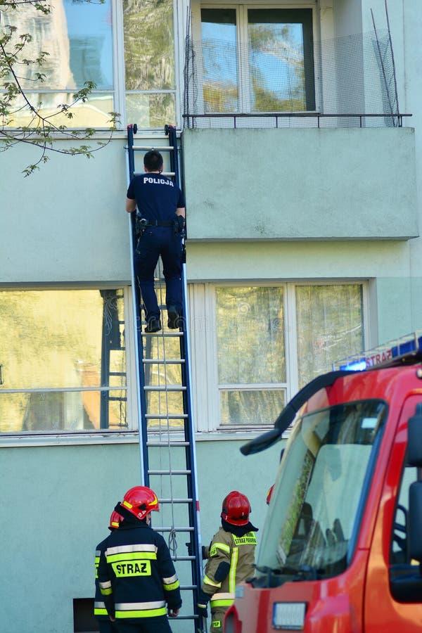 Muchos bomberos durante operaciones de rescate con una escalera grande imágenes de archivo libres de regalías