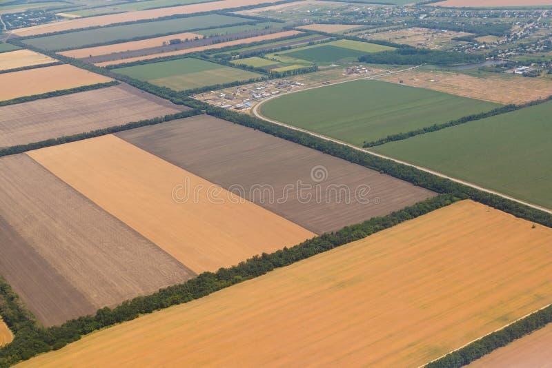 Muchos campos amarillos antes de cosechar de una opinión del ojo del ` s del pájaro imagen de archivo