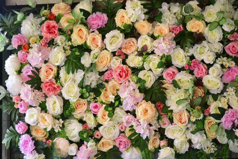 Muchos colores de rosas parecen felices imagen de archivo libre de regalías