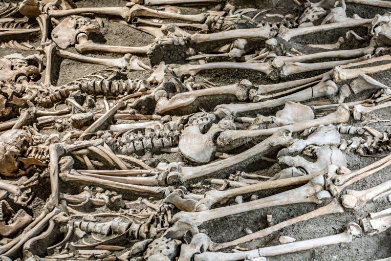 Muchos esqueletos en un sepulcro abierto imagenes de archivo