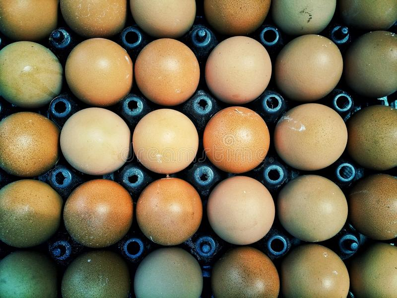 Muchos huevos fotografía de archivo