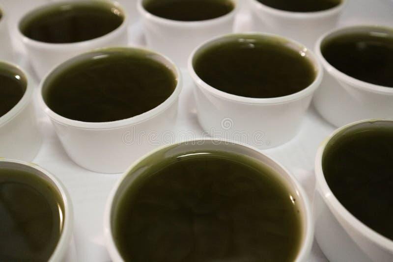 Muchos nuevos acaban de hacer valms líquidos de los ungüentos del ungüento del cáñamo en tazas cosméticas imagen de archivo