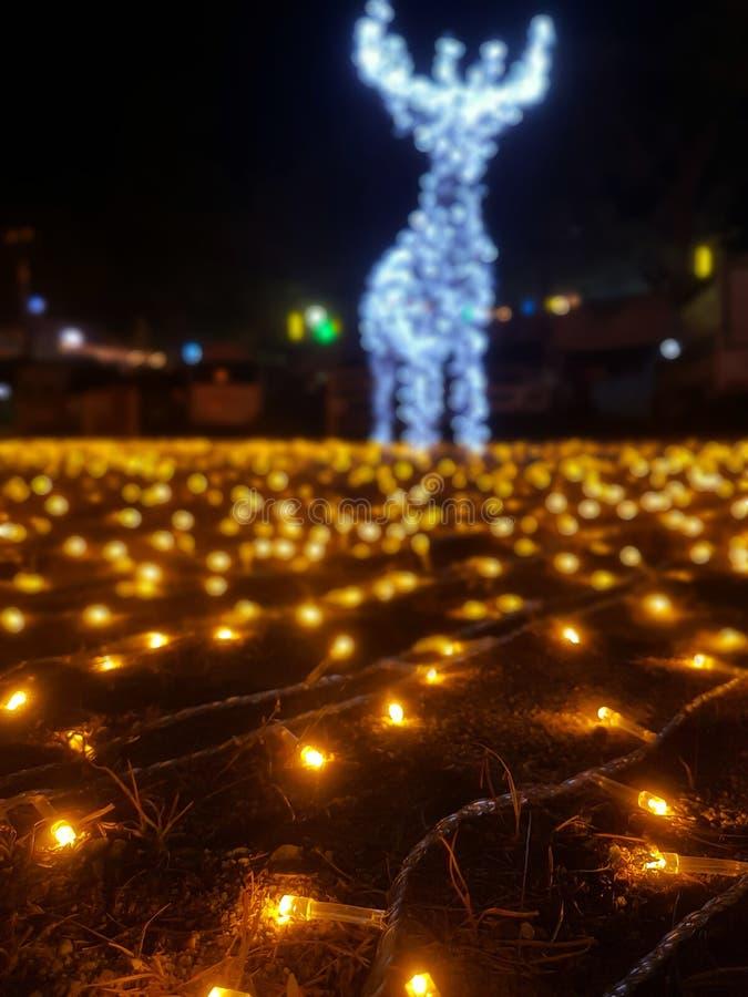 Muchos peque?os bulbos amarillos que se adornan en la hierba En un fondo ligero colorido fotos de archivo libres de regalías