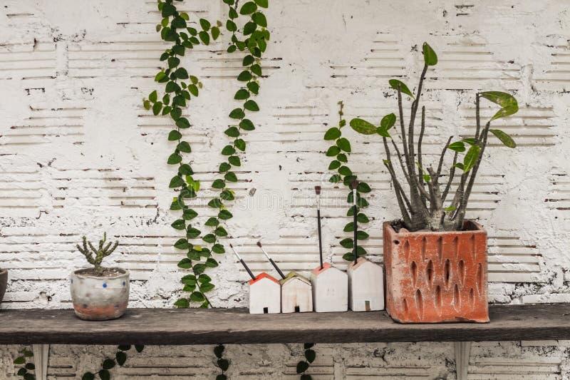 Muchos tipos de potes de la planta incluyendo los modelos de la casa puestos en los estantes hechos de la madera vieja imagen de archivo