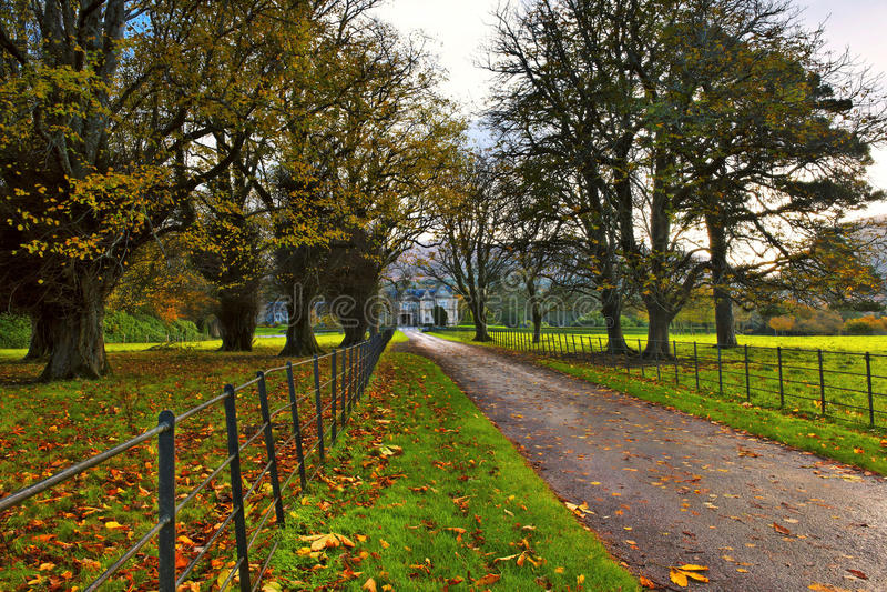 Download Muckross Estate Royalty Free Stock Image - Image: 11943526