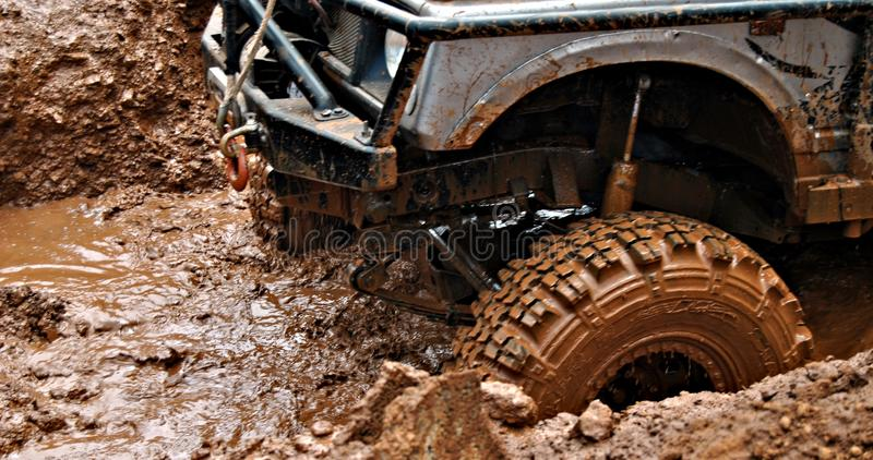 Download In The Mud Stock Photos - Image: 15841243