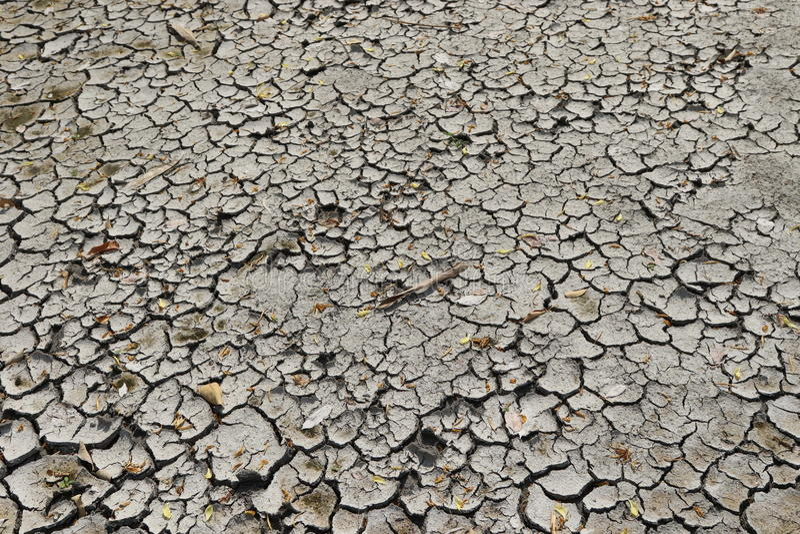 Download Mud cracks stock image. Image of occurs, formation, result - 78896047