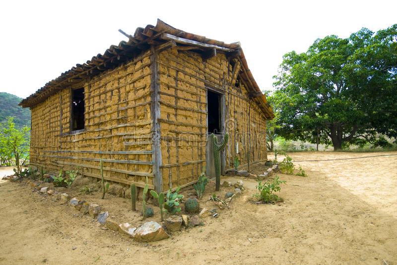 Download Mud house stock photo. Image of brazil, rainless, cactus - 11195230