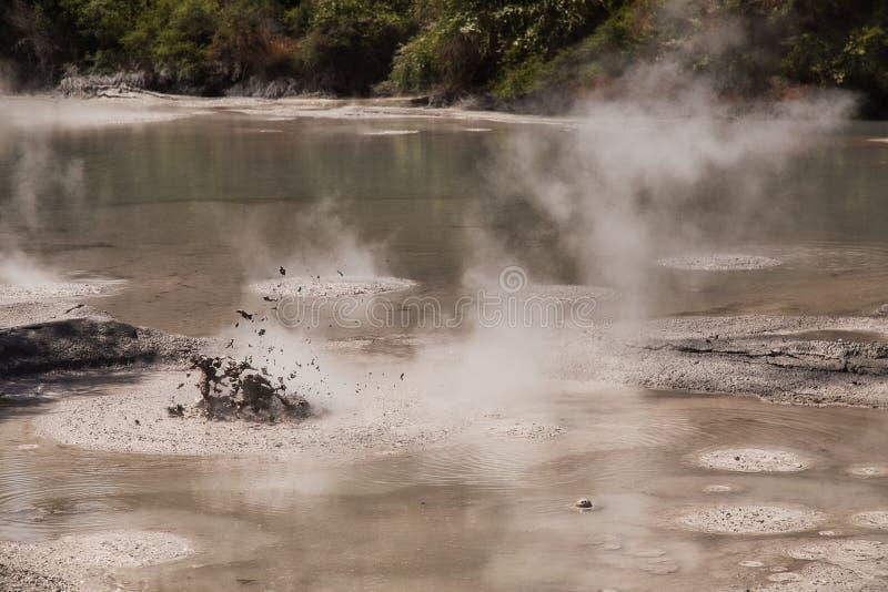 Mud Pool vid Wai-O-Tapu Geotermiska området nära Rotorua, Nya Zeeland arkivbild