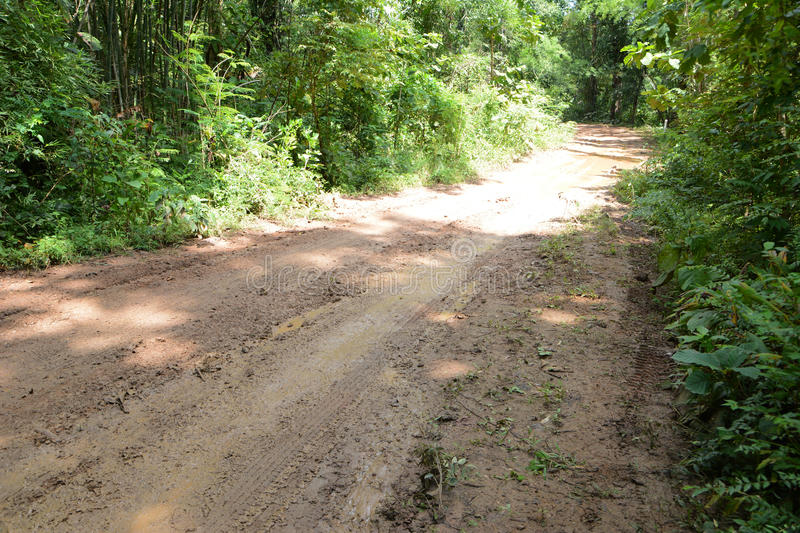 Mud road. Mud way after many rainy days in Thailand countryside stock photos