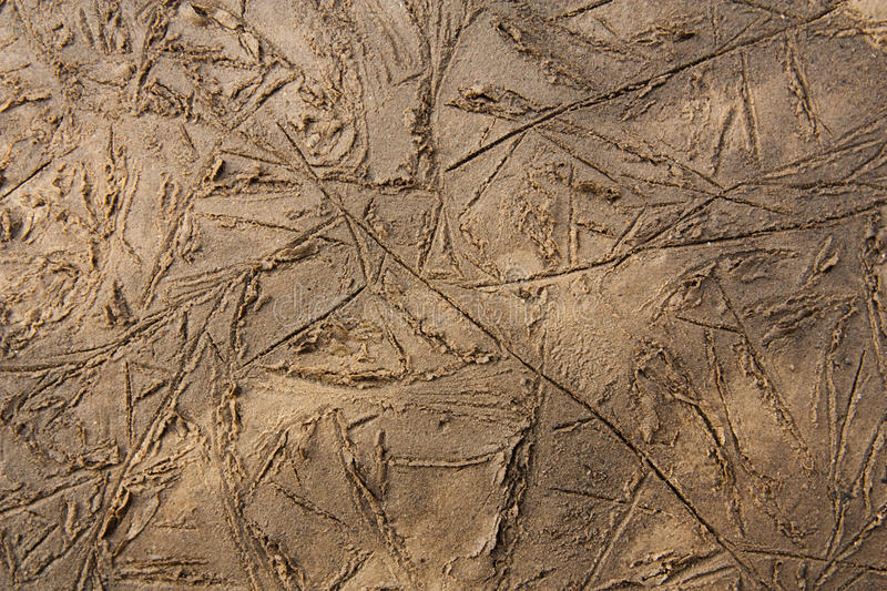 Download Mud texture stock photo. Image of grungy, traces, grunge - 12525866