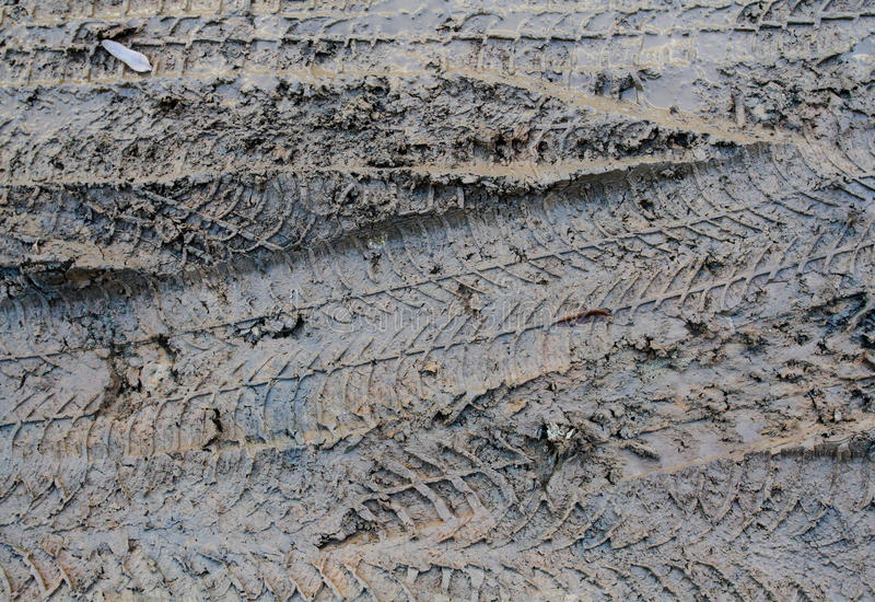 Download Mud Tracks Detail stock photo. Image of water, splash - 37909778