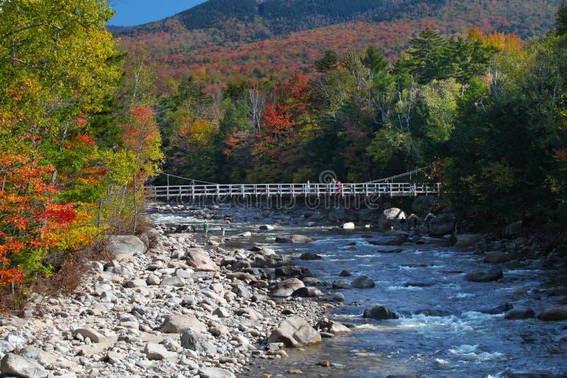 Mudança das cores da queda na montanha branca de New-Hampshire imagem de stock royalty free