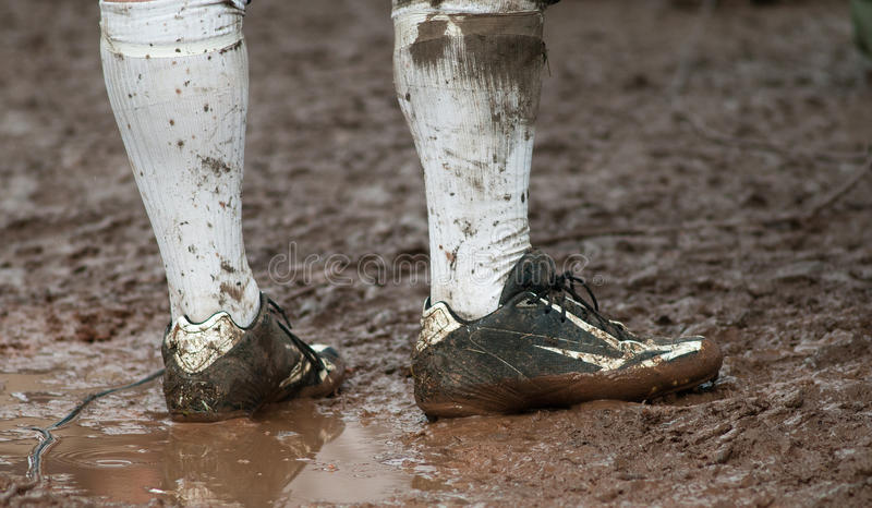 Muddy royalty free stock images