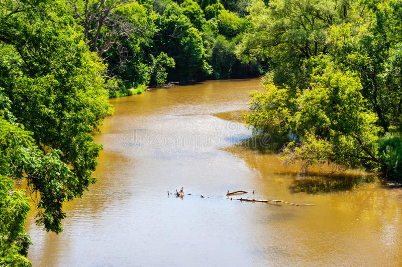 Muddy brown river passing through lush forest royalty free stock photos