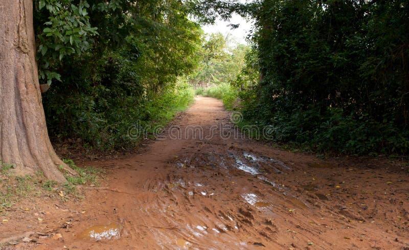Muddy Cambodian Road fotografie stock