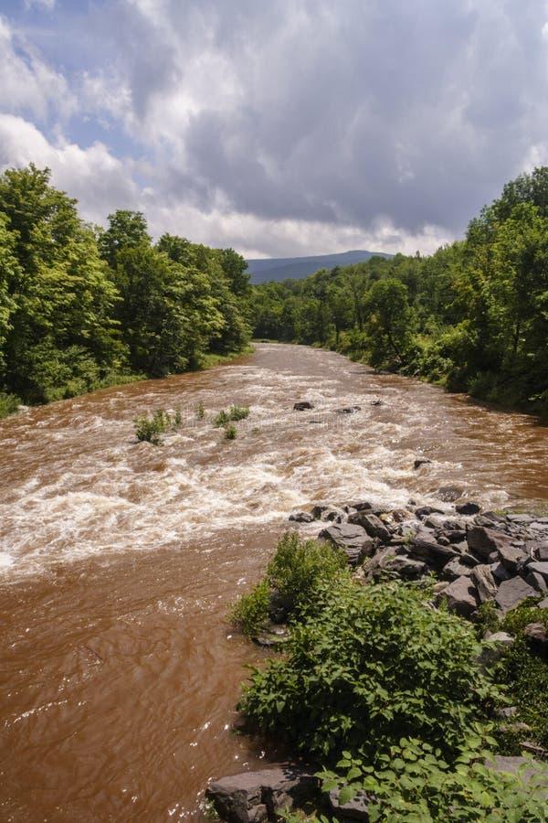 Free Muddy Creek After Heavy Rainfall Stock Photo - 126816060