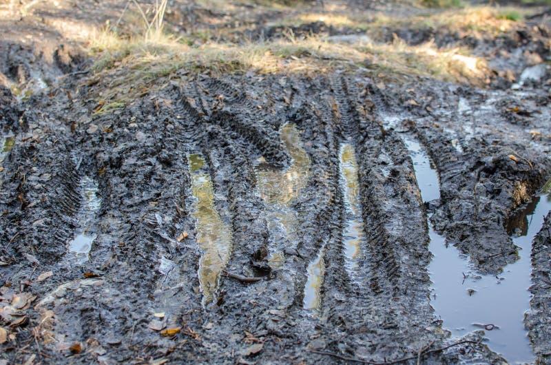 Muddy cycling tracks Bymarka, Trondheim stock photos