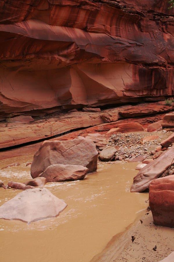 Free Muddy Desert River Stock Image - 9712211