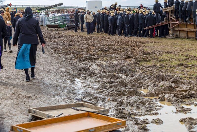 Muddy Fields à la vente de boue photographie stock