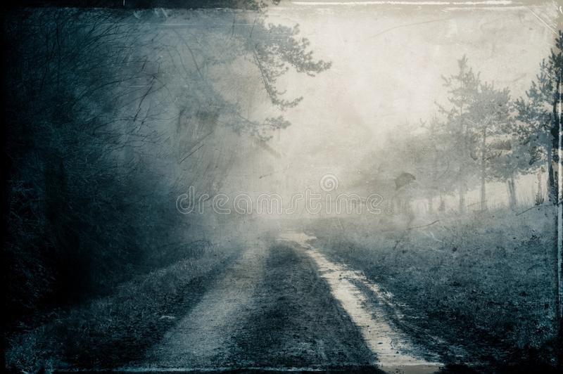 A muddy path by a wood, on a moody, misty winters day. With a grunge, retro edit.  royalty free illustration