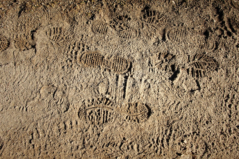 Muddy pathway with shoe prints royalty free stock images