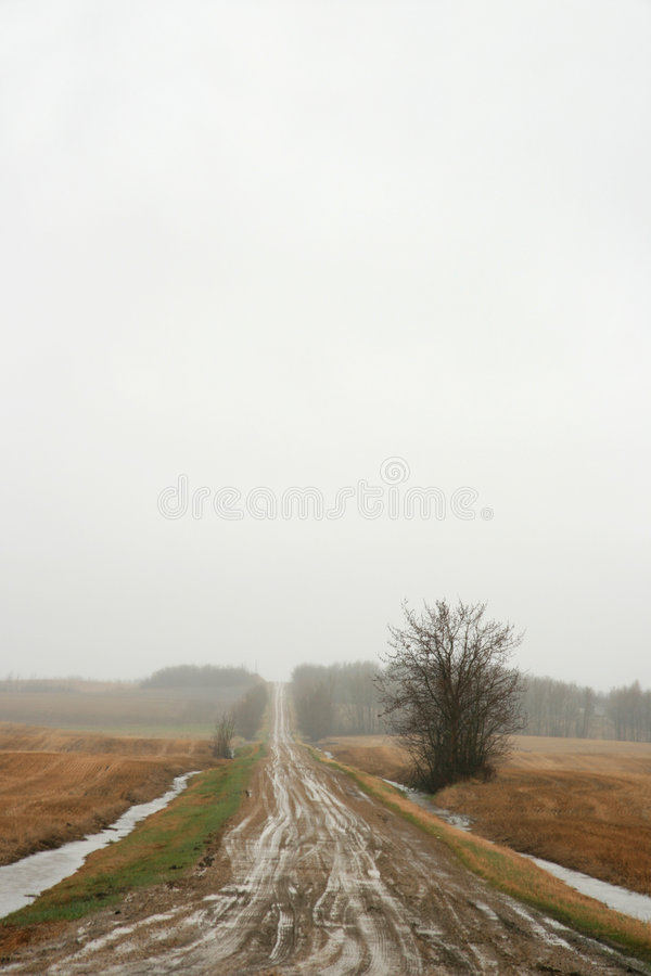 Muddy Road royalty free stock photo