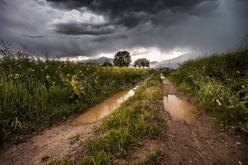 Muddy road through country fields royalty free stock photos