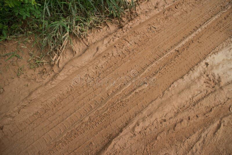 Muddy Road mit diagonalen Reifen-Bahnen und grasartiger Seitenvegetation lizenzfreie stockfotografie