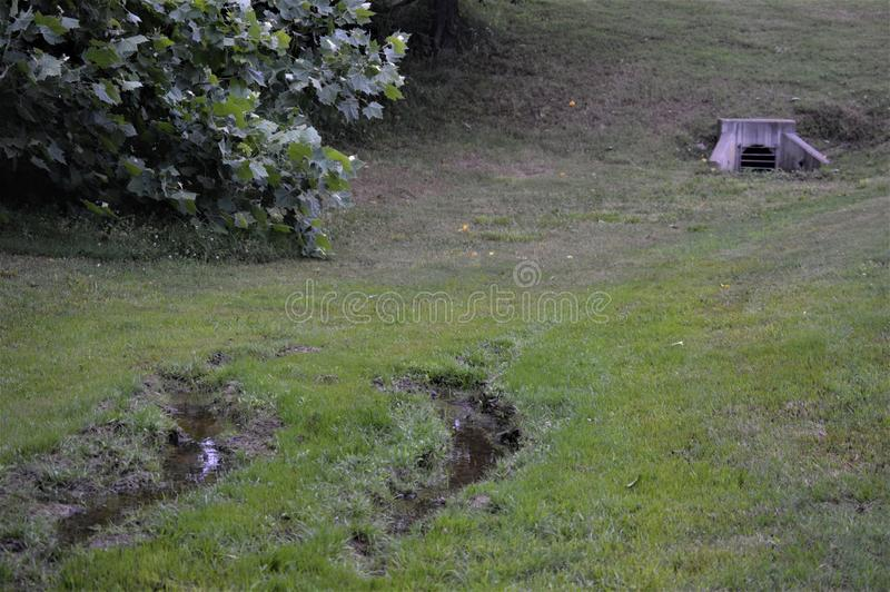 Muddy Ruts in a Green Field Leading to a Barred Culvert. Two muddy ruts in a green field leading up to a cement barred culvert. Next to a green leafy bush royalty free stock images