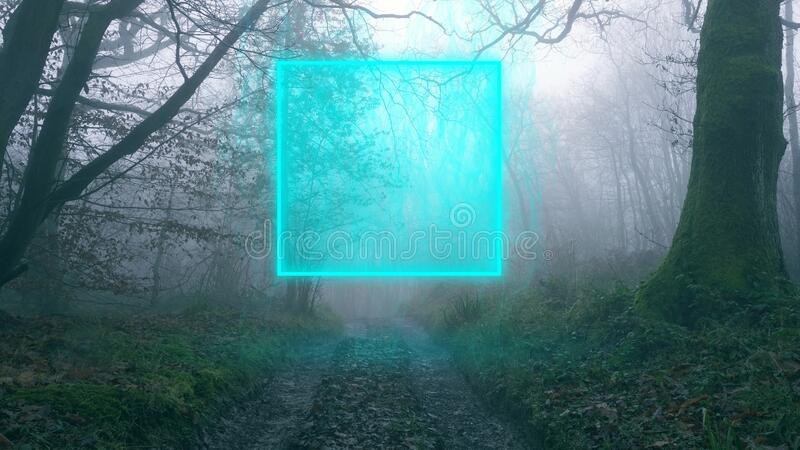 A muddy track through a spooky English forest. On a foggy, winters day. With a glowing magical portal.  stock photo