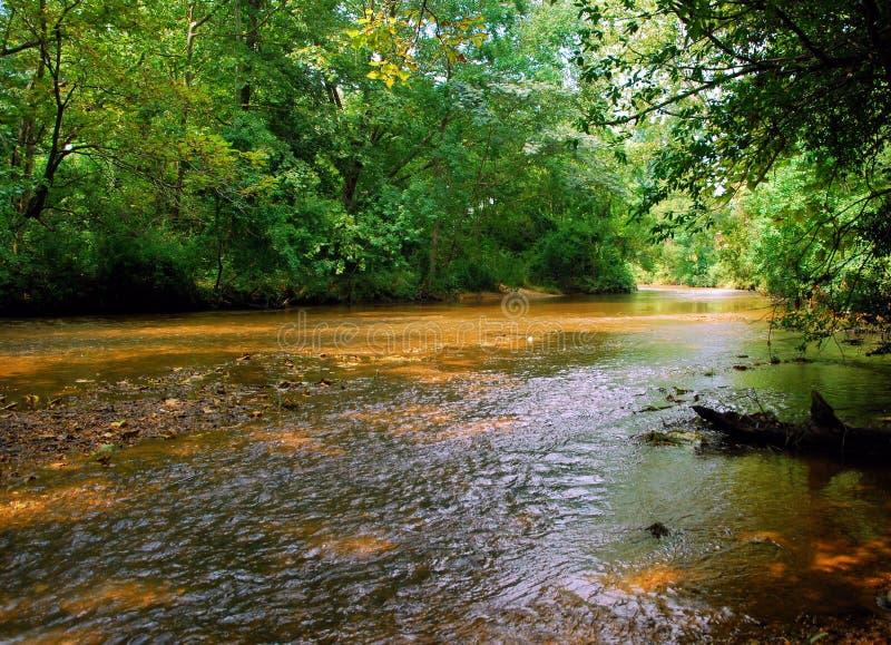 Muddy Water royalty-vrije stock fotografie