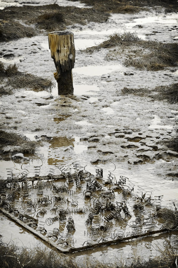 Mudflat. Bed springs discarded in a tidal mudflat royalty free stock photography