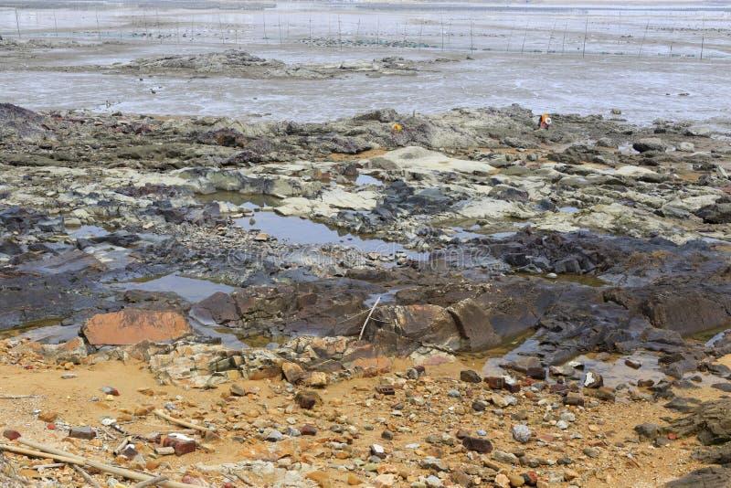 mudflat photo libre de droits
